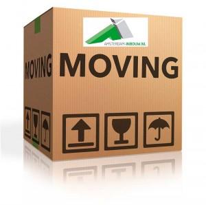 Moving AI